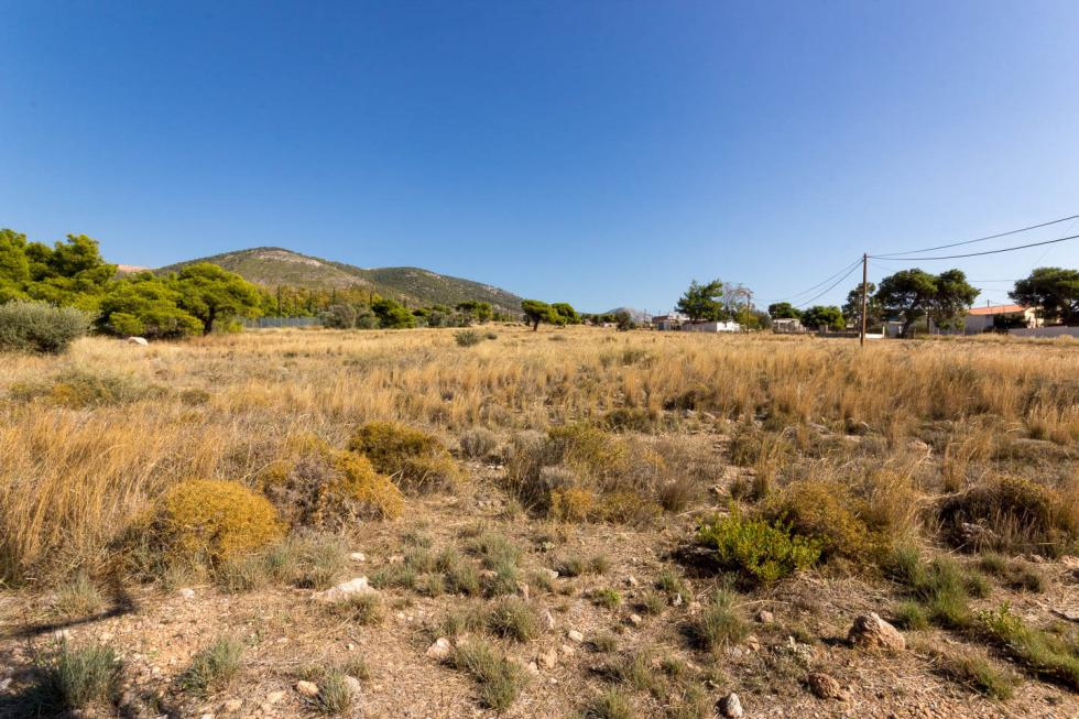 Industrial plot of 14.000 sq.m for sale, West Attica